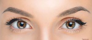 Cejas cuidadas para equilibrar la belleza del rostro.