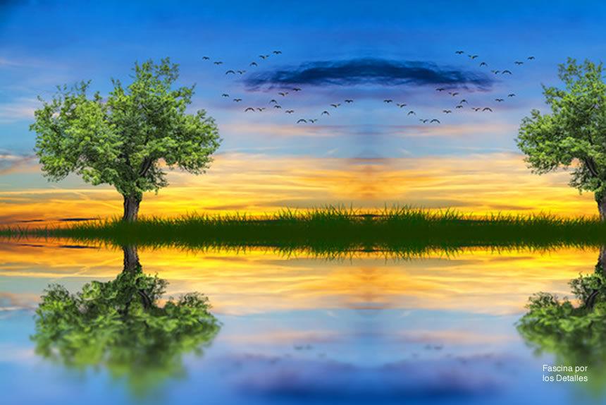 La naturaleza y abrazar a un árbol