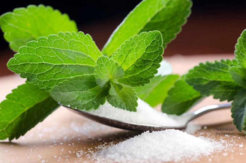 usos de la Stevia un dulce beneficio natural